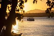 Noosa River Cruises